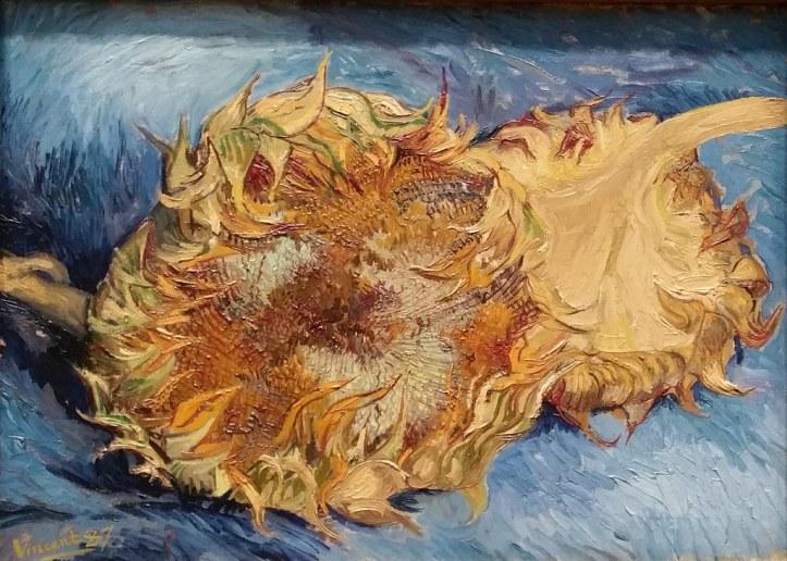 van gogh dead sunflowers